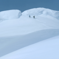 Force Majeure (2014)